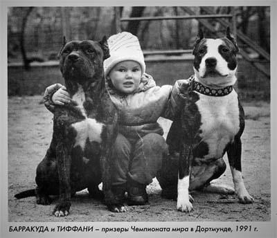 http://zoloto-sta.narod.ru/barakuda_tiffani.jpg